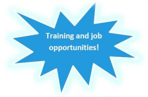 star with words training and job oppertunities